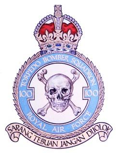 100 Squadron