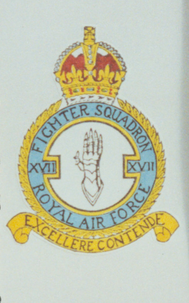 17 Squadron official badge.