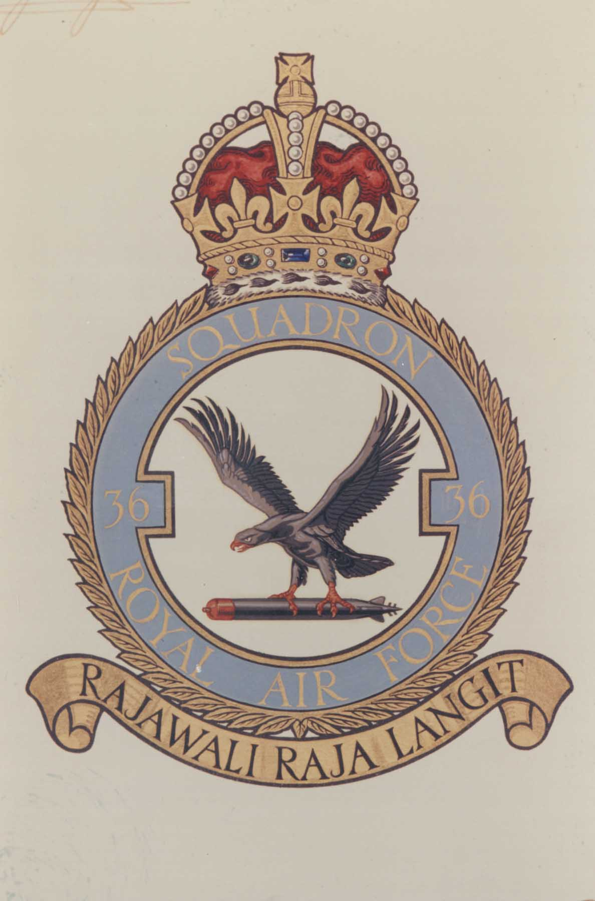 36 Squadron official badge.