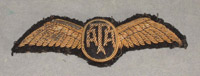 The coveted ATA pilot's wings