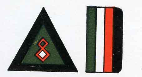 Iraqi Air Force national markings