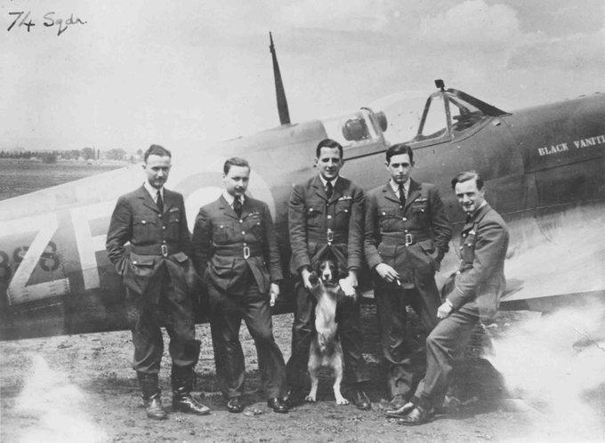 John Freeborn and 74 Squadron