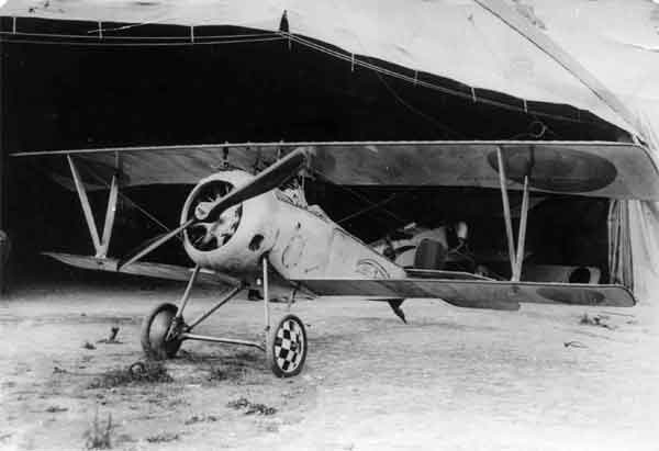 X003-2602/22066: Nieuport 23, serial N5017, 5me Escadrille de Chasse, Belgian Army air Service, Belgium, 1917. This aircraft was flown by Adj. E. Franchomme.