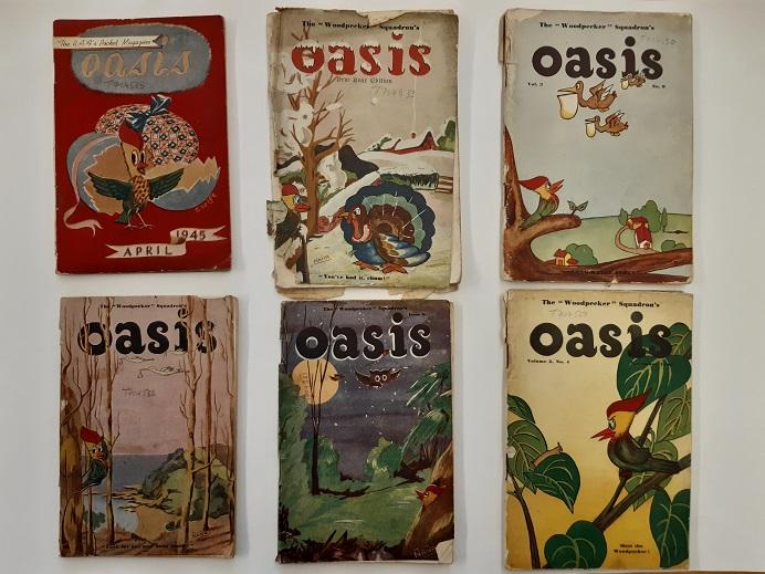 Oasis 1
