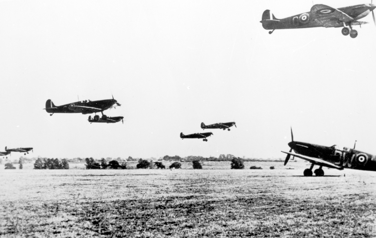 Spitfires in the Battle of Britain