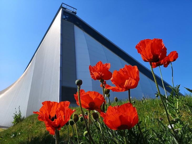 Poppies outside the National Cold War Exhibition