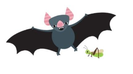 An adorable bat and grass hopper