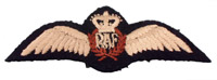 Pilots Wings: RAF