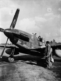 North American Mustang of No. 334th Squadron, 4th Pursuit Group, USAAF