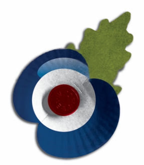 A Poppy in RAF Colours
